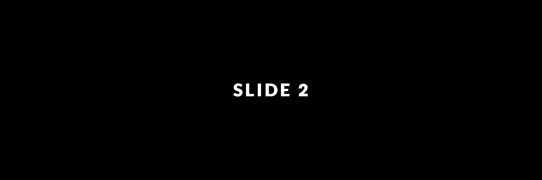 Slide 02